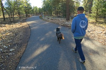 Walking Polly on the lovely greenway trail from camp to the rim.