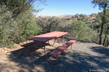"""View of typical """"sitting area"""" with picnic table. This is site #12 which has a nice valley view."""