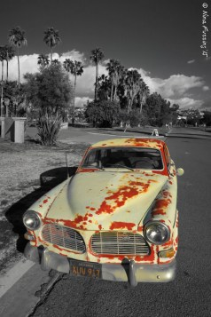 San Diego rust