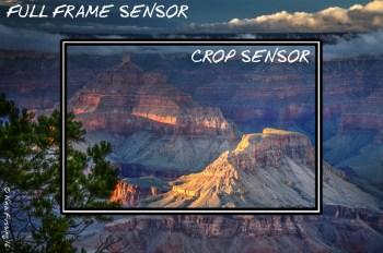Full frame versus crop frame pic