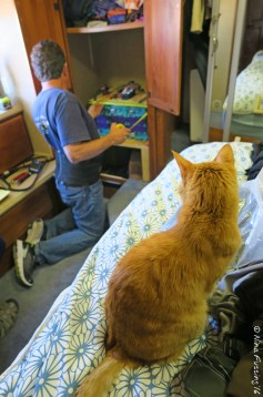 Marv had close supervision