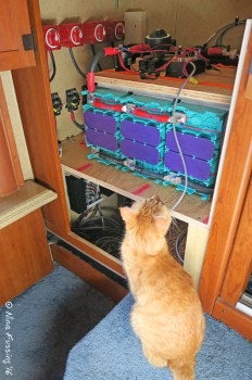Our installation was feline inspected & approved