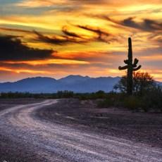 Au Revoir My Sweet Desert – Quartzsite, AZ