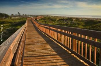 Walking Meadow Trail towards the Dunes