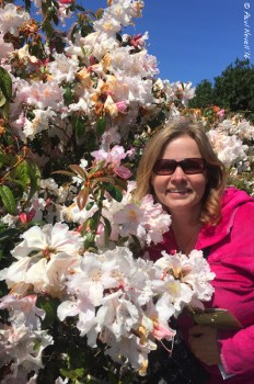 Oh the Rhododendrons