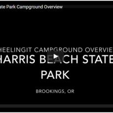 Campground Video – Harris Beach State Park, Brookings, OR