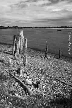 Bandon pilings