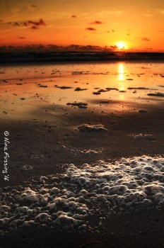 Calm evening by the beach