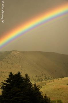 Mountain rainbows