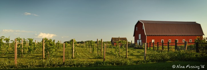 The red barn at 4e Winery