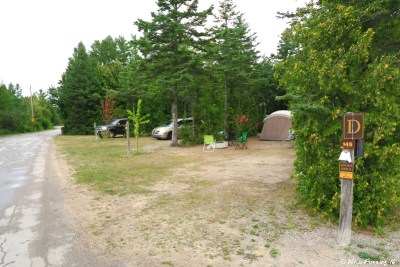 More section D campsites. Site 145 on right with 146 next to it.