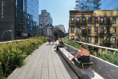 The highline is an oasis above the city