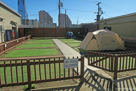 View of tent sites and facilities (on left)