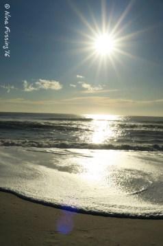 Assateague Afternoon Sun