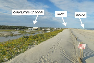 View of campground from the top of the dune that separates the sites from the beach.