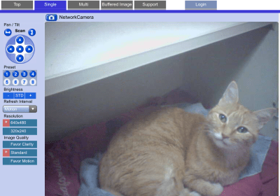 I was able to watch Taggart all-day on the kitty cam