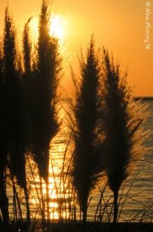 Sunset at Cape Charles, VA