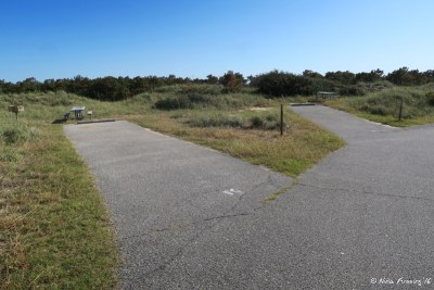 View further down F loop. Site F6 on left with F4 behind it.