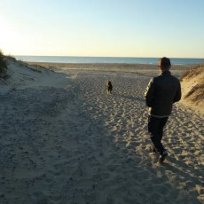 NP Campground Review – Ocracoke Campground, Hatteras National Seashore (OBX), NC