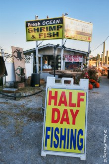 No end of seafood & fishing options here