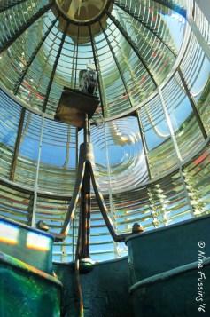 Looking inside the Fresnel Lens