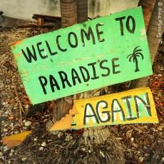 Settling Into The Island Vibe – Key Largo, FL