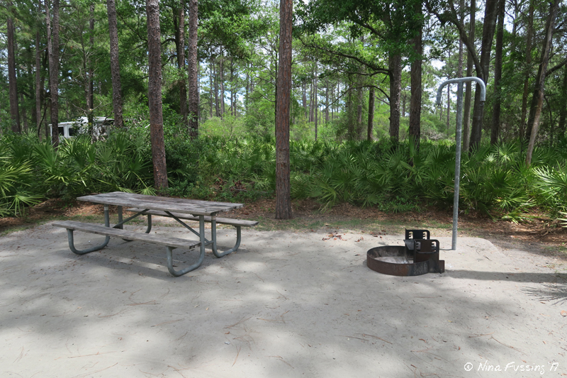Typical U201csitting Areau201d With Picnic Table, Fire Pit And Lamp Pole ...