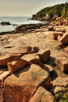Ocean Path shoreline