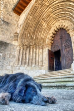 Polly relaxes by the 13th century portal of Iglesia San Pedro de la Rúa
