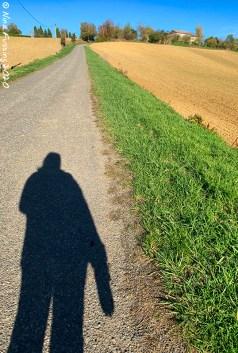 Walking my 1 km