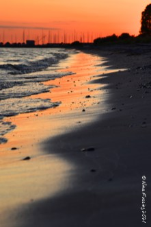 Beach sunset vibes