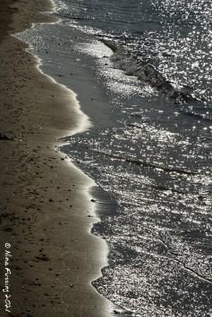 Seashore silver