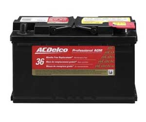 ACDelco 94RAGM Professional AGM Automotive Battery Review