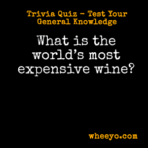 Wine Trivia Questions_Most Expensive Wine