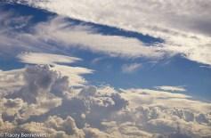 Skys-09220
