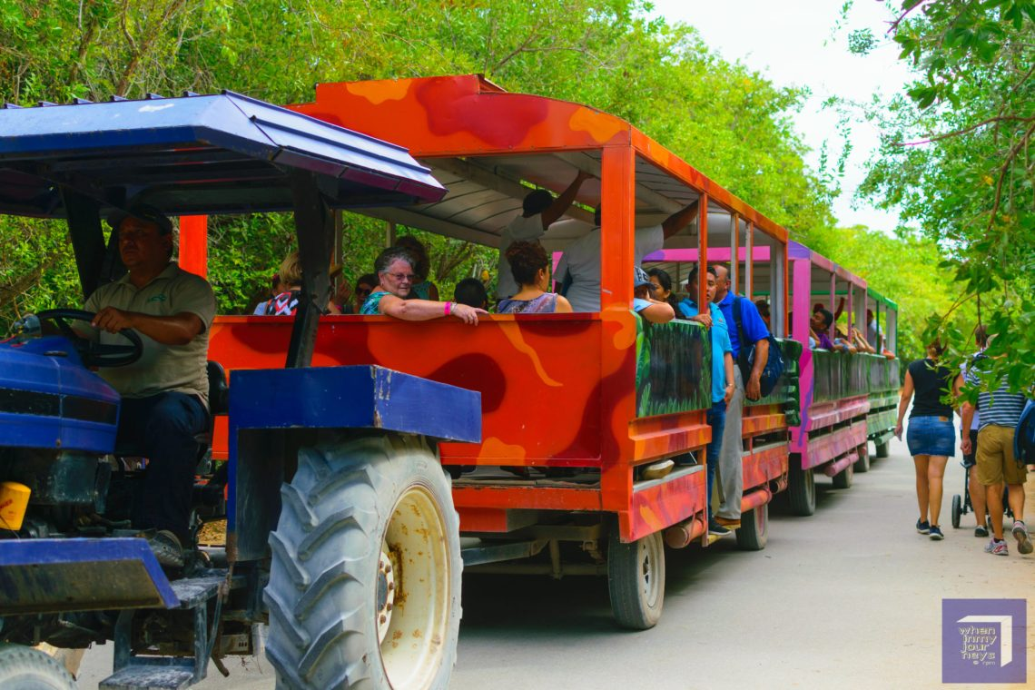 Tram Service to Entrance of Tulum Ruins