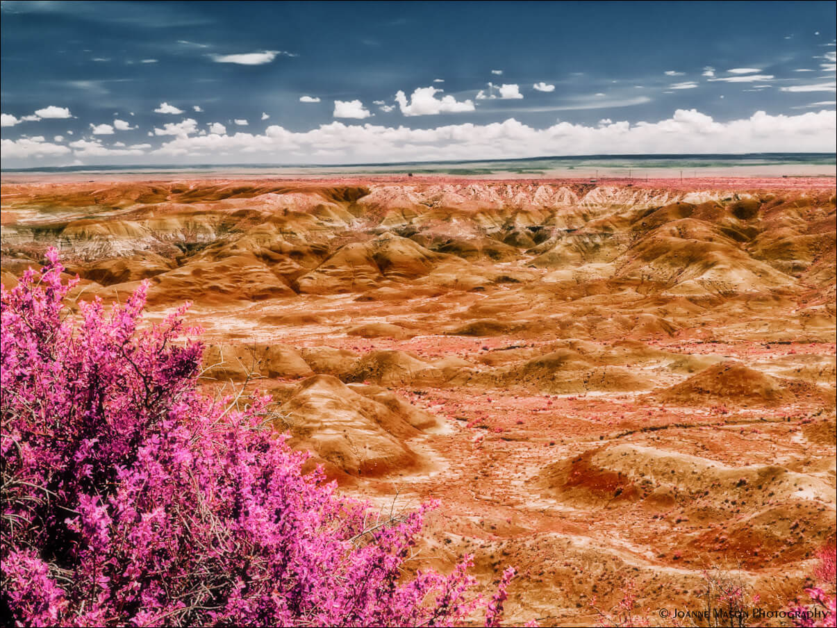 10 Facts About Arizona S Painted Desert That Will Amaze You