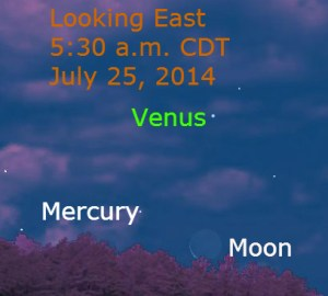mer_moon_140725