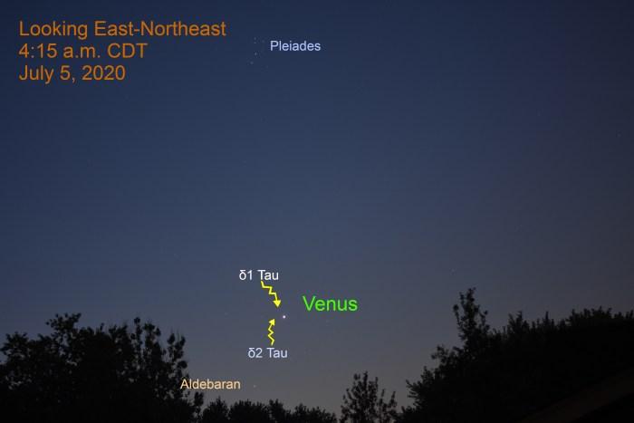 Venus in Taurus, July 5, 2020.