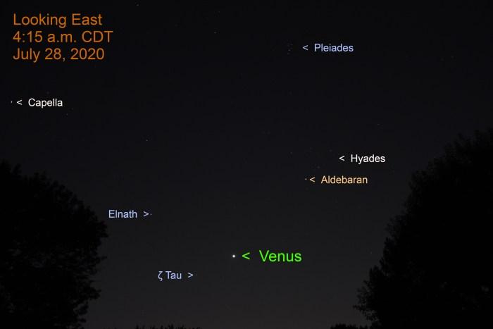 Venus in Taurus, July 28, 2020