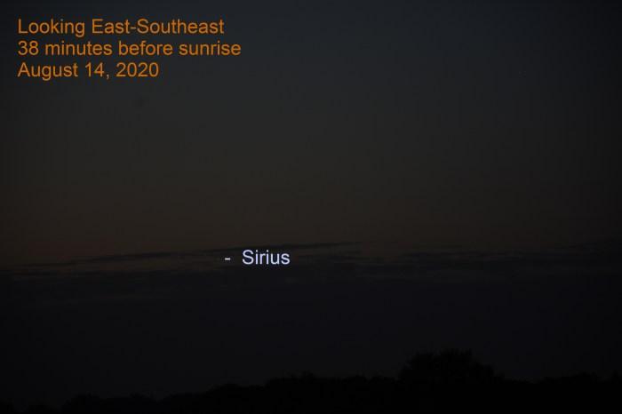 Venus, moon, Sirius, August 14, 2020
