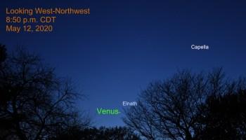 Venus and Elnath, May 12. 2020