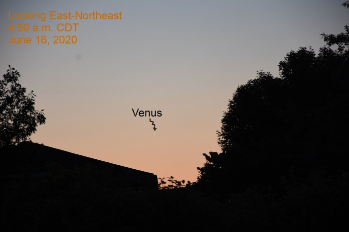 Venus is low in the east-northeast during morning twilight, June 6, 2020.