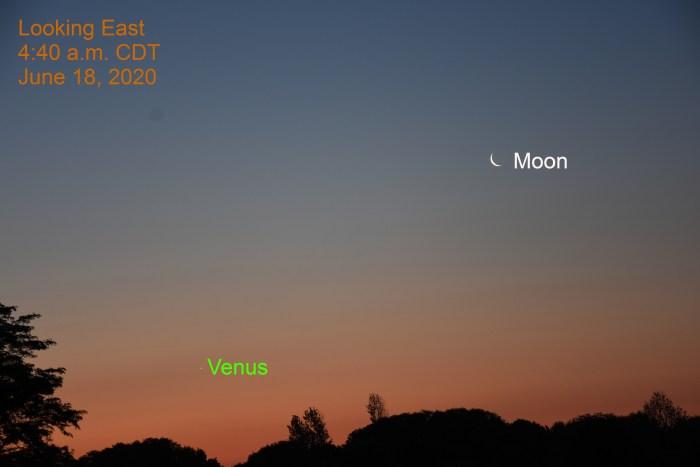 Crescent Moon and Venus