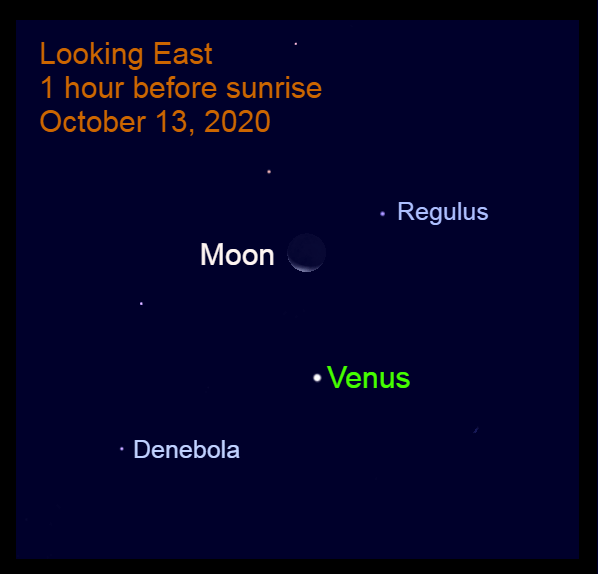 Venus and Moon in Leo, October 13, 2020