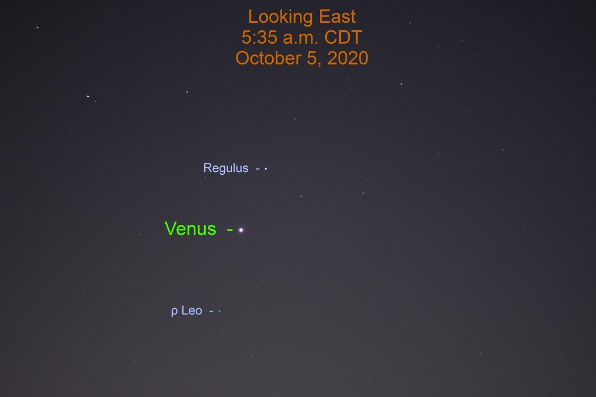 Venus in Leo, October 5, 2020