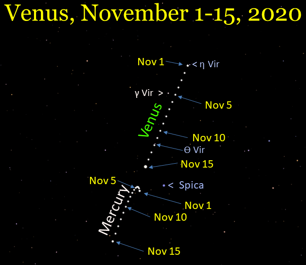Venus and Mercury, November 2020