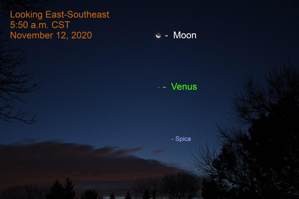 Venus, crescent moon, Spica, November 12, 2020