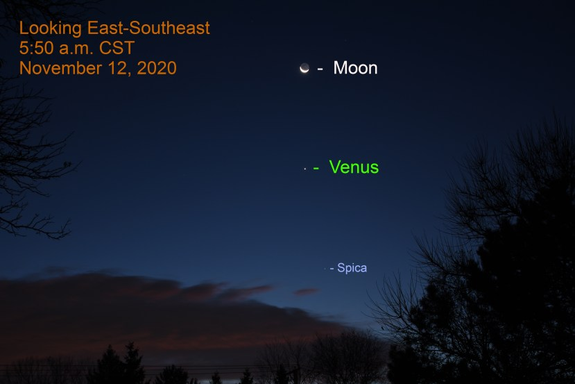 Venus, crescent moon, Spica, November 12, 2020