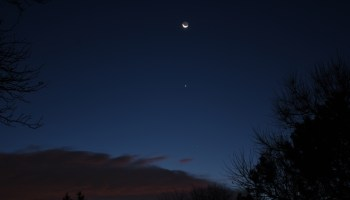 Venus, Moon and Spica, November 12, 2020